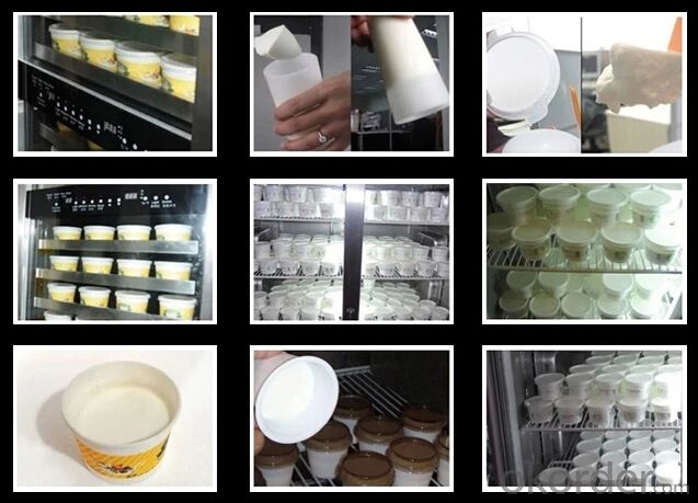 Yoghurt Maker for Commercial Use lower price Automatic Yoghourt Maker