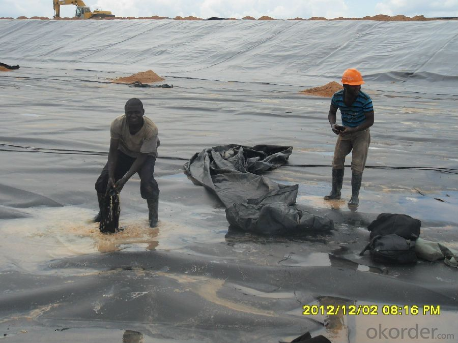 HDPE Geomembrane for Environmental Projects water conservancy projects landfill mining  canal