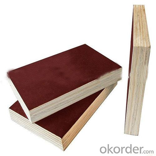 13 layers Film Faced Plywood with Double-sided Decoration