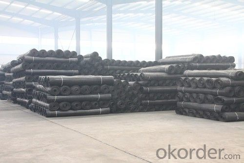 Woven Polyester Geogrid For Soil Reinforcement