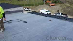 1.0mm/1.2mm/1.5mm EPDM Rubber Roofing Waterproof Membrane