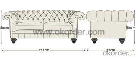 Rochester Sofa with Top Grain Leather or PU