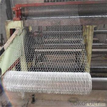 Hexagonal Wire  Mesh Chicken Netting GI PVC Wire Mesh 1/2