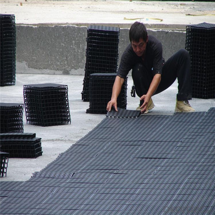 Geonet with High-Density Polyethylene (HDPE) and Ultravioresistant