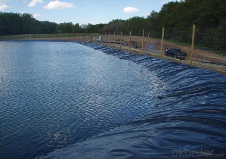 Buy Hdpe Geomembrane Black Plastic Sheeting For Pond Price