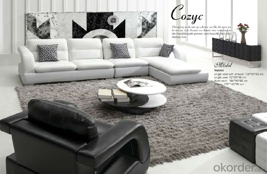 Living Room Couch Furniture of Luxury Model
