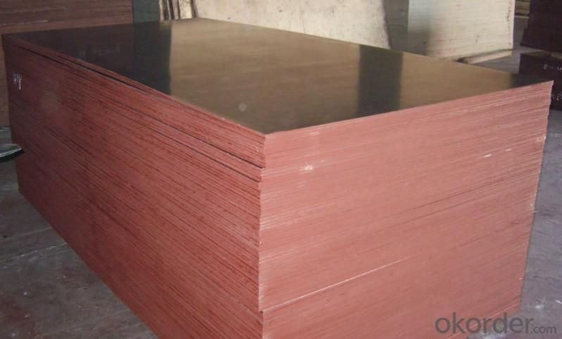Poplar Core Black Film Faced Plywood for Construction Use