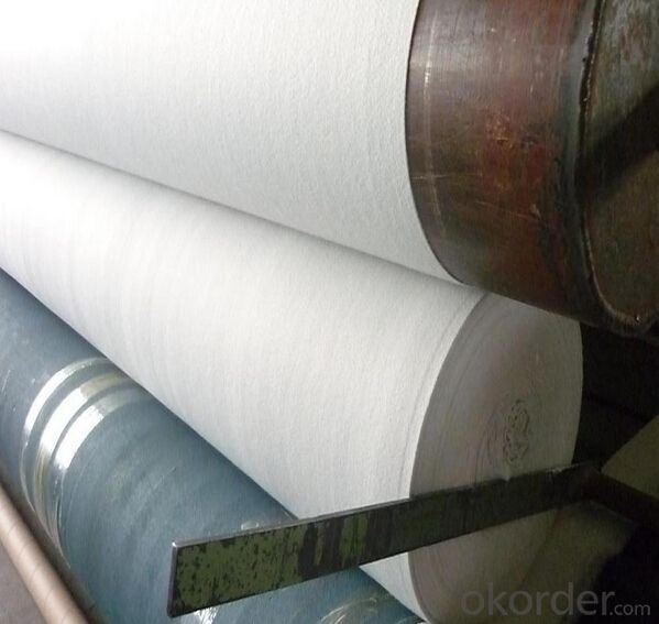 Geotextile Membrane HDPE Waterproof Geotextiles