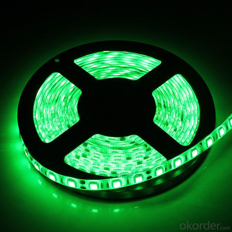 24V 240LEDS/Meter 3014 Led Strip Light