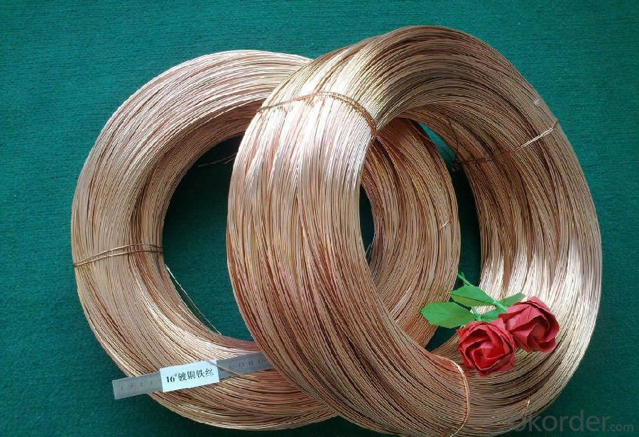 Copper Clad Steel Wire—Specification Is on Your Request
