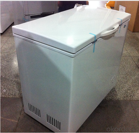 Solar Powered Freezer With Loading Capacity 318L