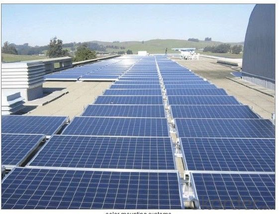 (45-50W) CNBM Solar Polycrystalline 6 Series