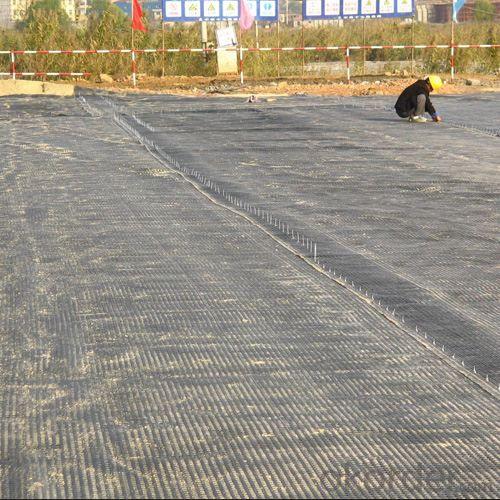 Free Sample Fiberglass Geogrid Prices