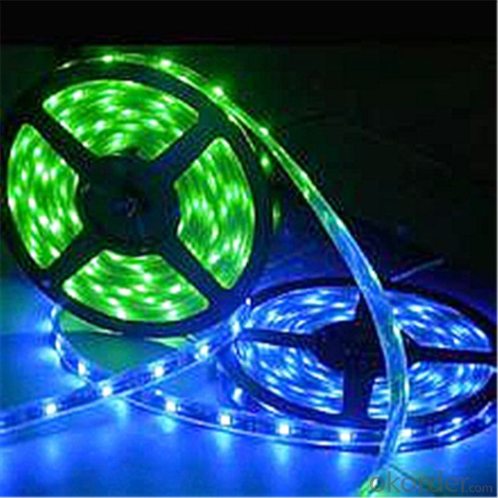 LED Strip Lights 5050 IP20/IP65/IP68