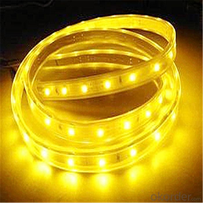 LED Strip Light LED Flexible Strip 2835 LED Strip IP20/IP65/IP68 Manufacturer