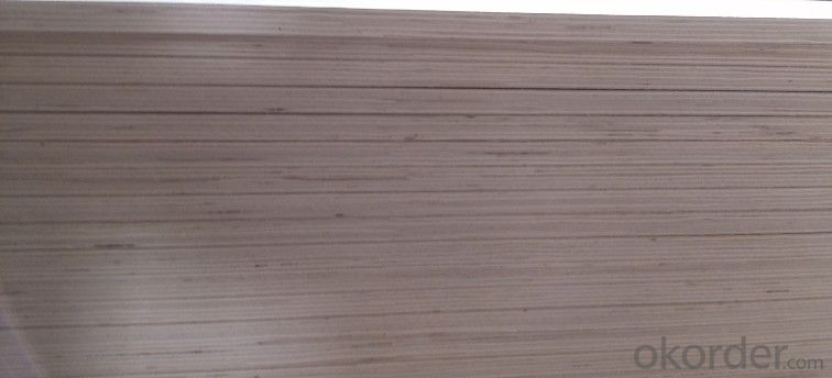UV Birch Plywood for American Plywood for Furniture wood veneer 18mM