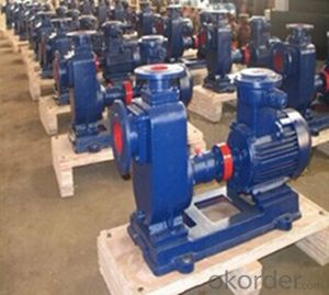 Self-Priming Horizontal Centrifugal Pump