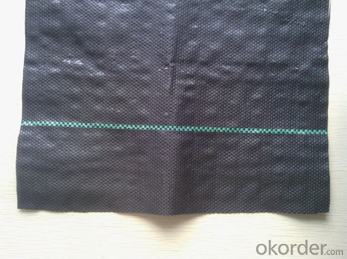PP woven geotextile