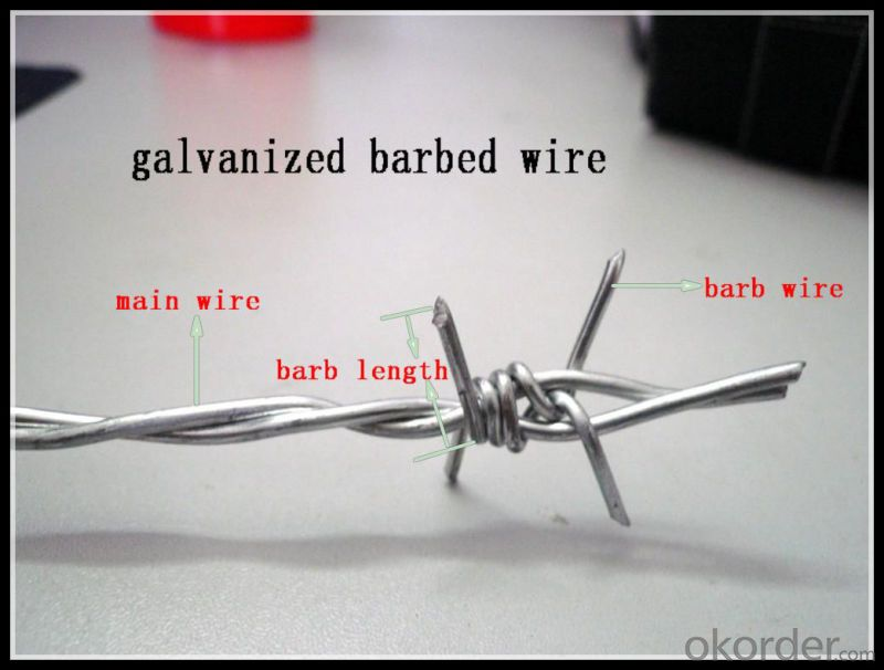 All Size 100% Factory Price Double Twist Galvanized Barbed Wire