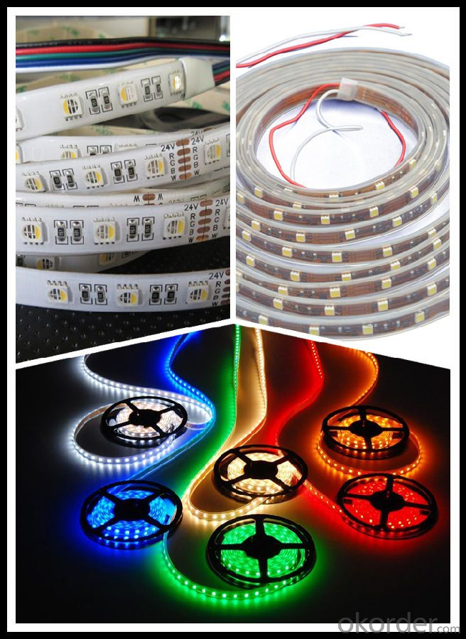 Led Strip IP65/IP68 5050 SMD Waterproof RGB  for festival Decoration