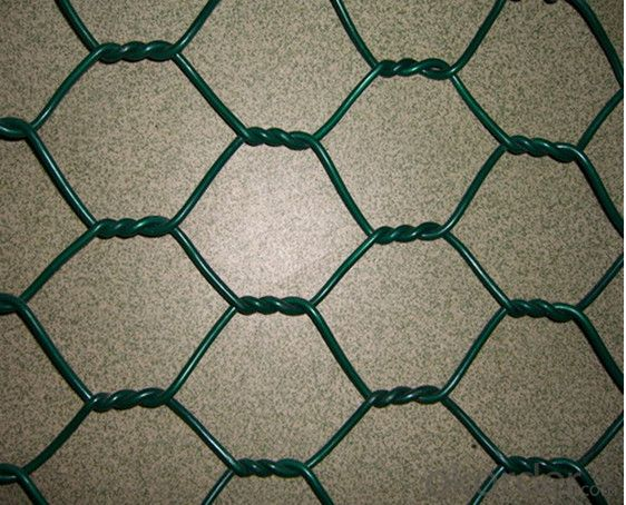 PVC Coated Hexagonal Wire Mesh for Chicken (YB-20)