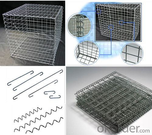 Professional China Factory Cost Price Welded Mesh Gabion/Gabion