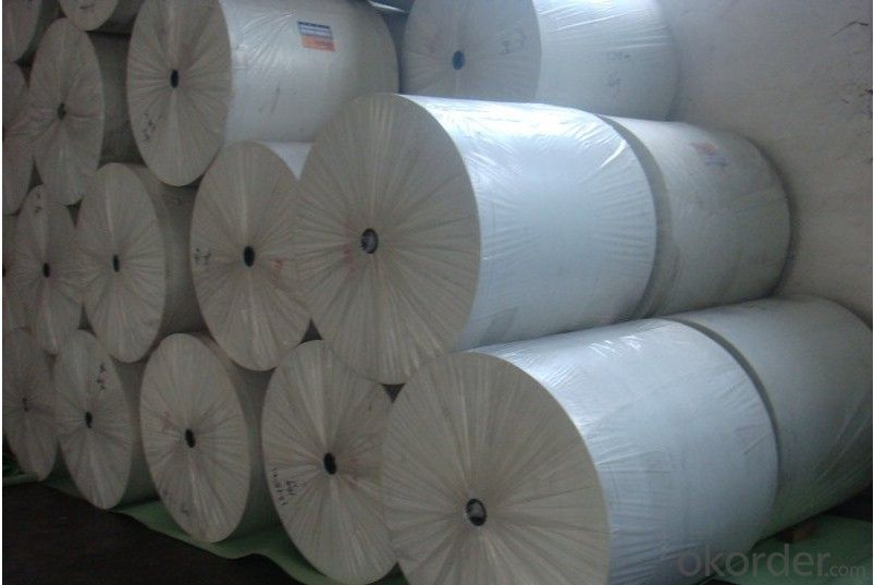 Spunbond Nonwoven Polyester Mat of Long Fiber