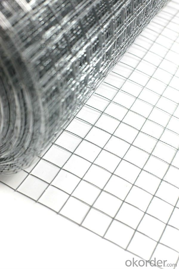 New Metre Roll Welded Wire Netting Mesh Graden Pet Chicken Coop Aviary Fencing