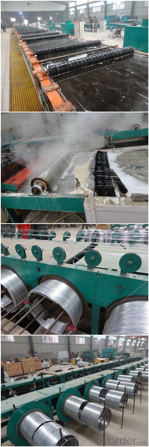 China Flexible Electro Galvanized Iron Wire (GIW)
