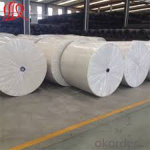 Non-Woven Geotextile for Highway,Railway,Dam