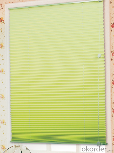 Curtains with Attached Valance