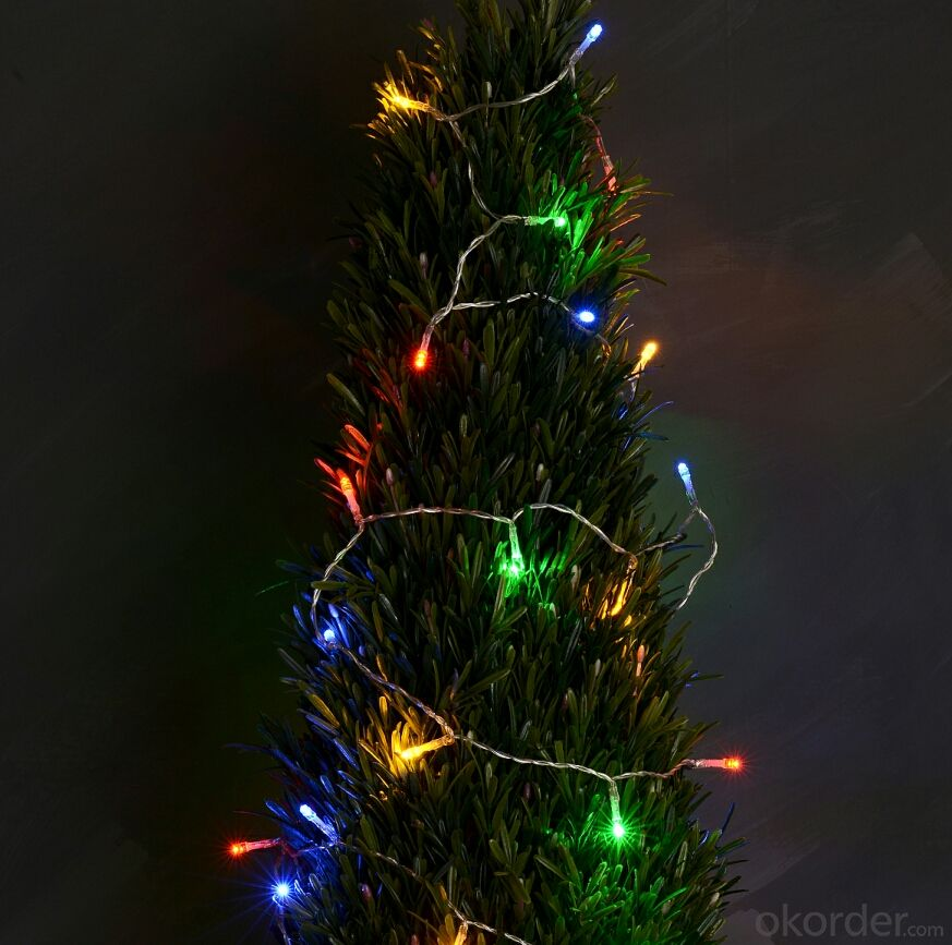 Colorful LED Light String for Outdoor Indoor Wedding Christmas Party Decoration