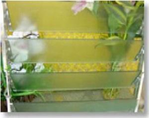Louver Glass