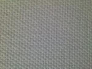 Fiberglass Wallcovering Cloth-120g/m2