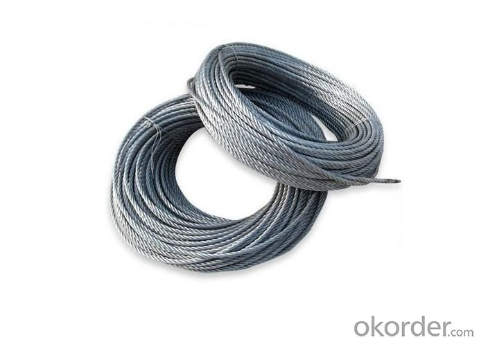 Stainless Steel Wire Rope/Rod