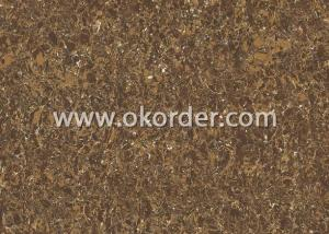 Polished Porcelain Tile CILO26608