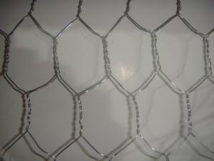 1/2''*1/2'' Galvanized Hexagonal Wire Netting