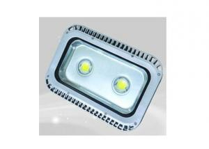 Outdoor LED Flood Light 100 Watt