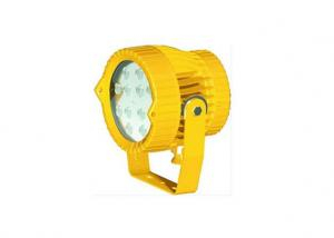 LED Explosion-Proof Light 40w 60w