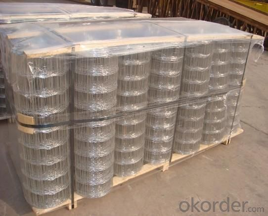 Welded Wire Mesh with Hot Dipped Galvanized Finish
