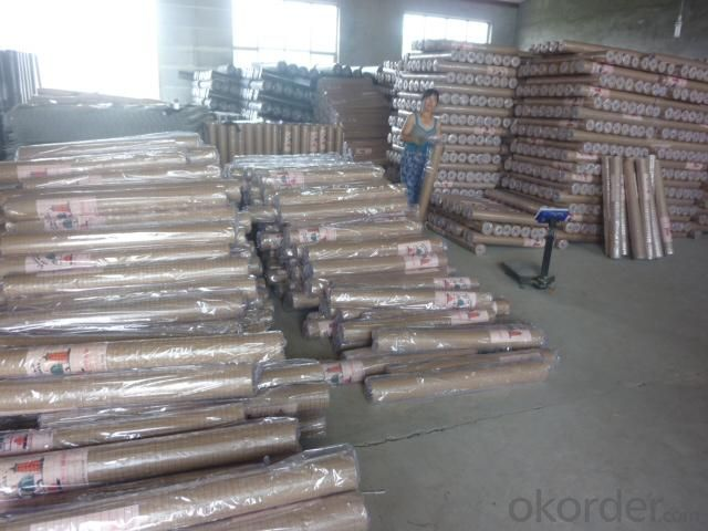 Welded Wire Mesh with Electro Galvanized Finish