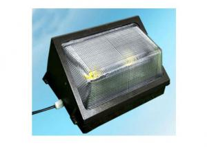 LED Outdoor Wall Light with Stainless Steel/LED Wall Pack Manufacturer