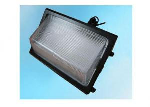 LED Outdoor Wall Pack Light 100 Watt