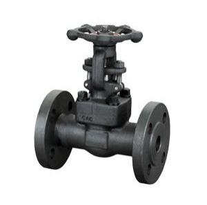 forged Flange Gate Valve