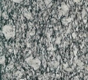 Granite Tiger White tile CMAXG2505