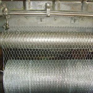 Galvanized Hexagonal Wire Netting for Keeping Poultry