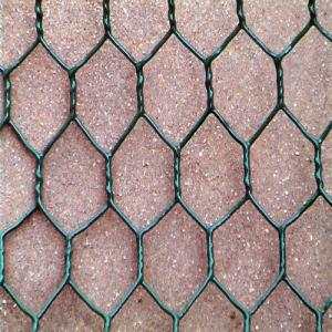 PVC Hexagonal Wire Netting Used for Farm