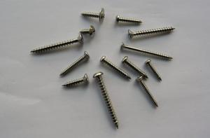 Self Tapping Screws in Various Head