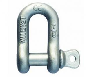 Stainless Steel Shackle Standard Size M10 Screw Pin Anchor Shackle
