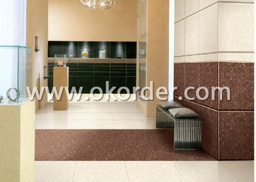 Polished Porcelain Tile CT26608